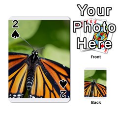 Butterfly 3 Playing Cards 54 Designs