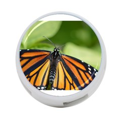 Butterfly 3 4 Port Usb Hub (two Sides)  by timelessartoncanvas