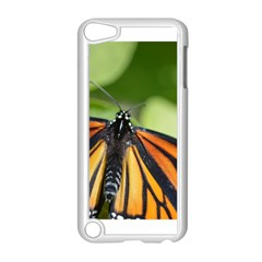 Butterfly 3 Apple Ipod Touch 5 Case (white) by timelessartoncanvas