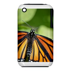 Butterfly 3 Apple Iphone 3g/3gs Hardshell Case (pc+silicone) by timelessartoncanvas