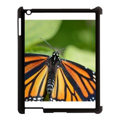 Butterfly 3 Apple Ipad 3/4 Case (black) by timelessartoncanvas