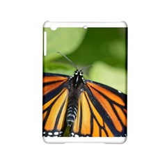 Butterfly 3 iPad Mini 2 Hardshell Cases by timelessartoncanvas