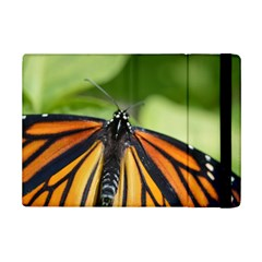 Butterfly 3 Ipad Mini 2 Flip Cases by timelessartoncanvas