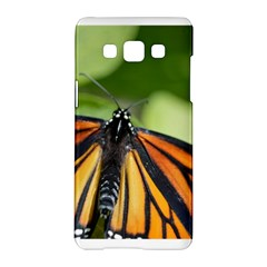 Butterfly 3 Samsung Galaxy A5 Hardshell Case  by timelessartoncanvas