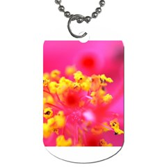 Bright Pink Hibiscus Dog Tag (two Sides) by timelessartoncanvas