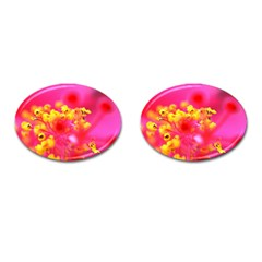Bright Pink Hibiscus Cufflinks (oval) by timelessartoncanvas