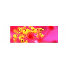 Bright Pink Hibiscus Satin Scarf (oblong) by timelessartoncanvas
