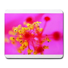Bright Pink Hibiscus 2 Large Mousepads by timelessartoncanvas