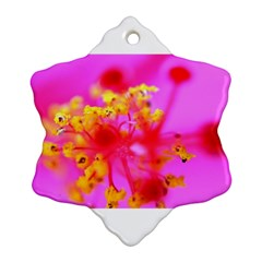 Bright Pink Hibiscus 2 Snowflake Ornament (2 Side) by timelessartoncanvas
