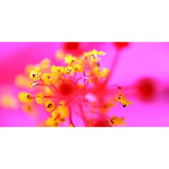 Bright Pink Hibiscus 2 You Are Invited 3d Greeting Card (8x4)