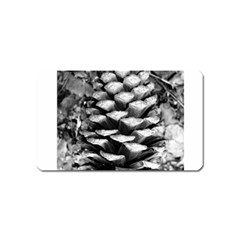 Pinecone Spiral Magnet (name Card) by timelessartoncanvas