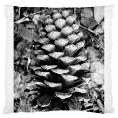 Pinecone Spiral Large Cushion Cases (two Sides)  by timelessartoncanvas