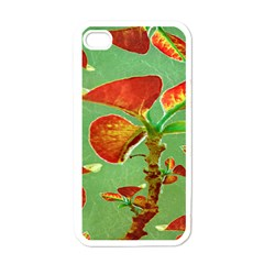 Tropical Floral Print Apple Iphone 4 Case (white) by dflcprints