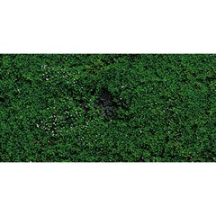 Green Moss You Are Invited 3d Greeting Card (8x4)
