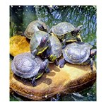 Exotic; Turtle Graphic Template - Shower Curtain 66  x 72  (Large)