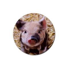 Sweet Piglet Rubber Round Coaster (4 Pack)
