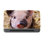 Sweet Piglet Memory Card Reader with CF Front
