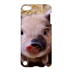Sweet Piglet Apple Ipod Touch 5 Hardshell Case