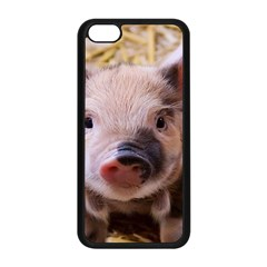 Sweet Piglet Apple Iphone 5c Seamless Case (black)