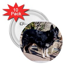 Black German Shepherd Full 2.25  Buttons (10 pack)  by TailWags