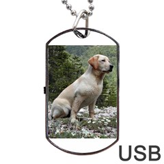 Yellow Lab Sitting Dog Tag USB Flash (One Side) by TailWags