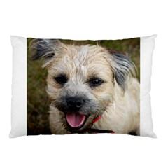 Border Terrier Pillow Cases