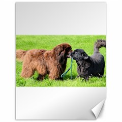 2 Newfies Canvas 12  x 16   by TailWags