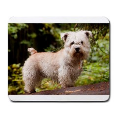 Glen Of Imaal Full wheaton Large Mousepads by TailWags