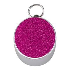 Sparkling Glitter Pink Mini Silver Compasses