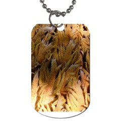 Sago Palm Dog Tag (two Sides) by timelessartoncanvas
