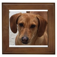 Dachshund Framed Tiles by TailWags