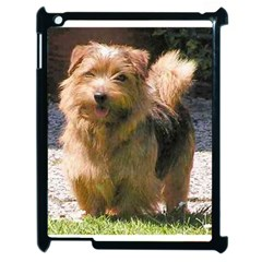 Norfolk Terrier Full Apple iPad 2 Case (Black) by TailWags