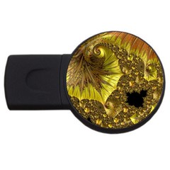Special Fractal 35cp Usb Flash Drive Round (2 Gb)  by ImpressiveMoments