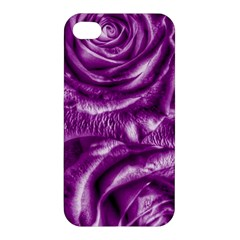 Gorgeous Roses,purple  Apple Iphone 4/4s Premium Hardshell Case by MoreColorsinLife