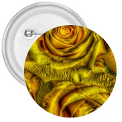 Gorgeous Roses, Yellow  3  Buttons