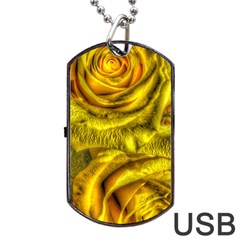 Gorgeous Roses, Yellow  Dog Tag Usb Flash (one Side) by MoreColorsinLife