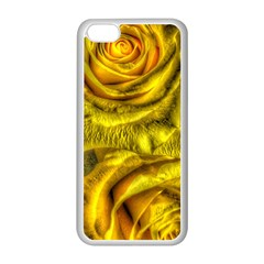 Gorgeous Roses, Yellow  Apple Iphone 5c Seamless Case (white)