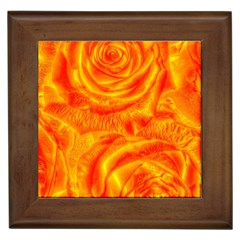 Gorgeous Roses, Orange Framed Tiles by MoreColorsinLife