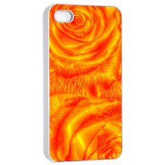 Gorgeous Roses, Orange Apple Iphone 4/4s Seamless Case (white)