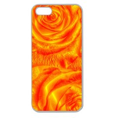 Gorgeous Roses, Orange Apple Seamless Iphone 5 Case (clear)