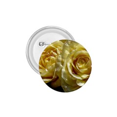 Yellow Roses 1 75  Buttons
