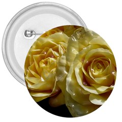 Yellow Roses 3  Buttons