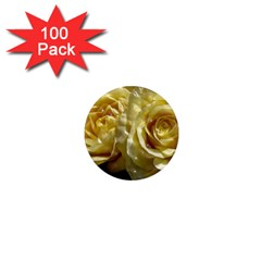Yellow Roses 1  Mini Magnets (100 Pack)