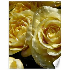 Yellow Roses Canvas 12  X 16   by MoreColorsinLife