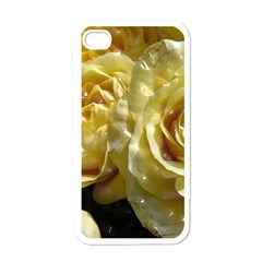 Yellow Roses Apple Iphone 4 Case (white)