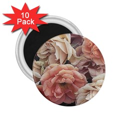 Great Garden Roses, Vintage Look  2 25  Magnets (10 Pack)