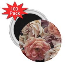 Great Garden Roses, Vintage Look  2 25  Magnets (100 Pack)
