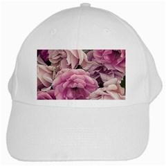 Great Garden Roses Pink White Cap