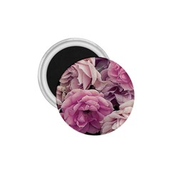 Great Garden Roses Pink 1 75  Magnets