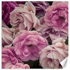Great Garden Roses Pink Canvas 12  X 12